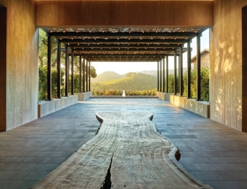 EJA designs lighting for the World's Best New Winery by Robb Report